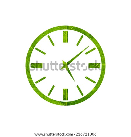 Clock icon made of green leaf isolated on white background - stock photo
