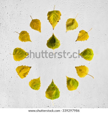 Clock stacked with colorful autumn beech leaves on the wet glass.Twelve o'clock. Noon. Midday.Colored highlighted wet autumn leaves raindrops glued to the window on a gray background. - stock photo