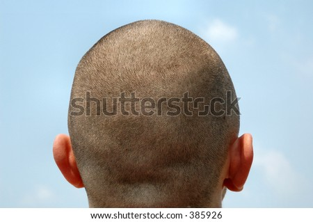 Close haircut with ears - stock photo