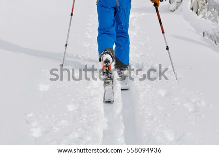 close on man legs walking with  ski touring on fresh snow