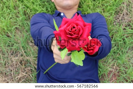Close up a beautiful of artificial red roses are given by young relaxed man lying on green grass.  Love and romance Valentine's day concept.