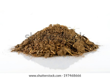 Close up Animal Compost, Organic Fertilizer for plantation - stock photo