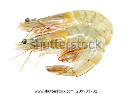 Close up banana prawn or shrimp isolated on white  - stock photo