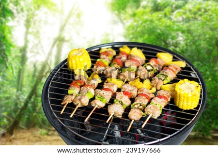 Close up bbq and corncob on a grilling pan