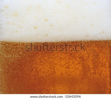 Close-up beer with froth - stock photo