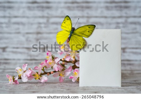 Close up Blank Greeting Card Leaning on White and Pink Orchid Flowers Vertically with Yellow Green Butterfly - stock photo