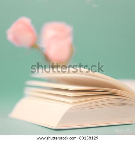 Close up book - stock photo