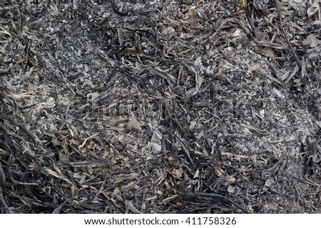 Close up Burning grass background