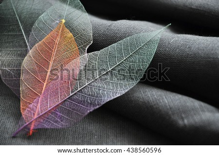 Close up color skeleton leaves put in heart shape on gray fabric - stock photo