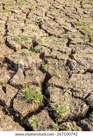 Close up cracked soil during drought. - stock photo