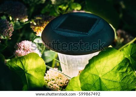 close up decorative small solar garden light lanterns in flower bed garden design - Solar Powered Lanterns