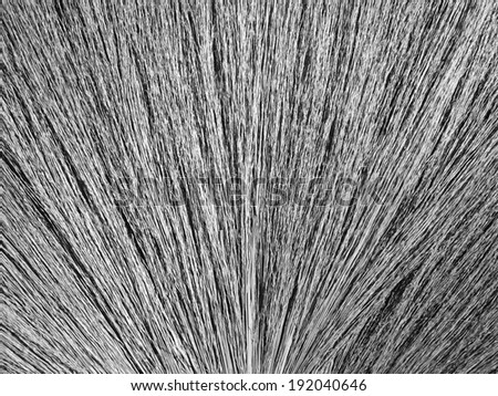 Close up detail of a broom texture. Grunge texture of dry grass