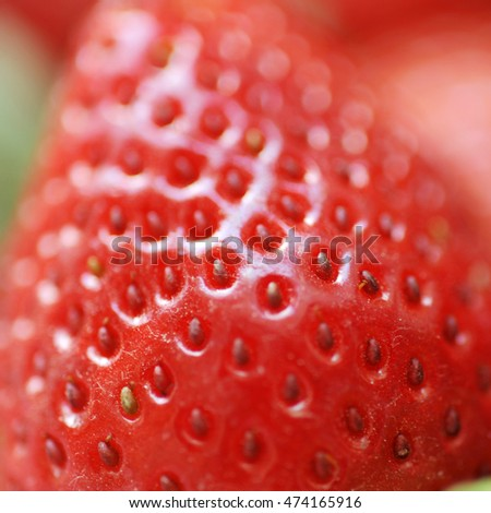 Close-up detail of a fresh red strawberry.