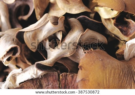 Close-up dried aromatic plant parts.