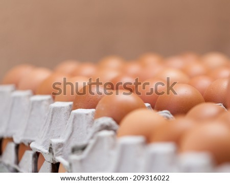 close up Eggs in the package