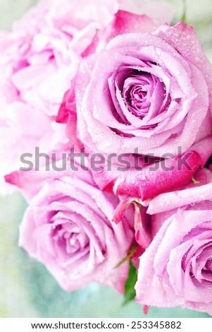 Close-up floral composition with a pink roses . - stock photo