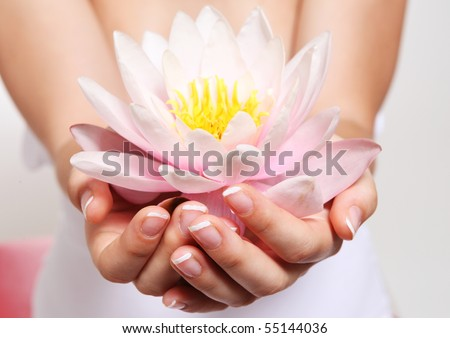 Close up flower in hand with a beautiful manicure - stock photo