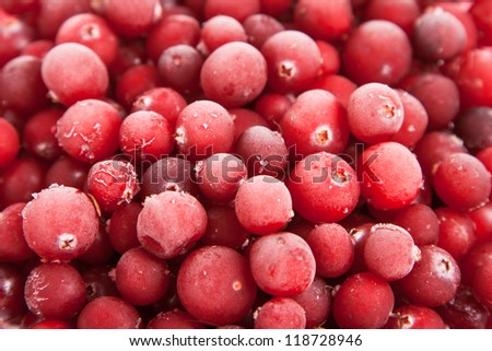 close up fresh frozen red cranberry - stock photo