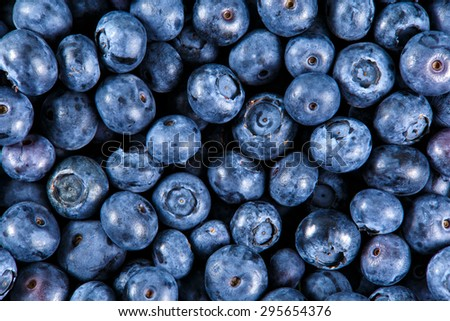 Close up Fresh Organic picked Blueberries. Rich with vitamins Background, texture. - stock photo