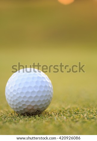 Close up golf ball on green grass in course - stock photo