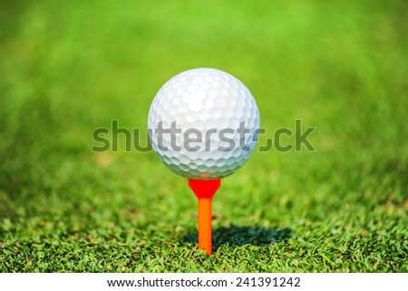 close up golf ball on tee   - stock photo