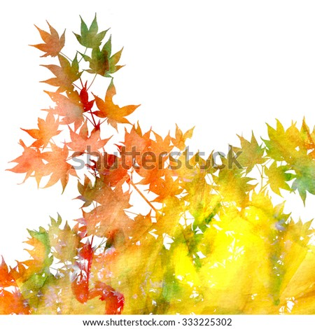 Close up image of maple leaves on white background. Hand painted watercolor texture with photographic leaves. Fall background image. - stock photo