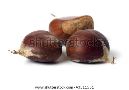 Close up image of three chestnuts isolated on white background