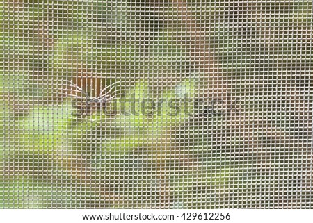 CLOSE UP IMAGE OF TORN WINDOW SCREEN  - stock photo
