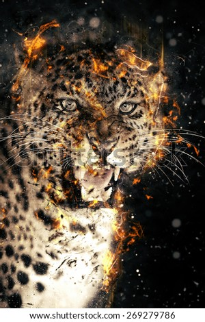 Close-up leopard portrait in fire on dark background - stock photo