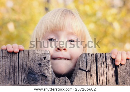 Close up Little Blond Girl Peeking Over an Old Wooden Fence with a Smile While Looking at the Camera. - stock photo