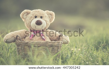 Close up lovely brown teddy bear in rattan basket on green field with lens flare. Warm toning effect. Retro and vintage style