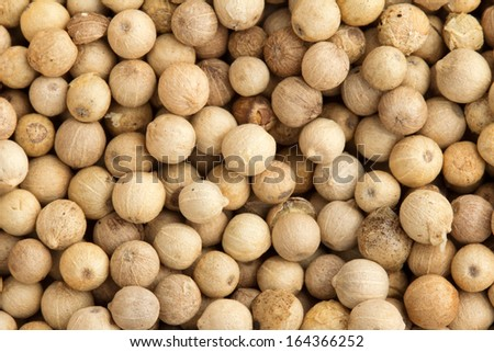 close up of a background of  white peppercorns - stock photo