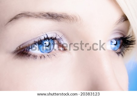 close up of a blue eyes - stock photo