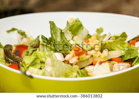 Close up of a bowl of traditional green salad.