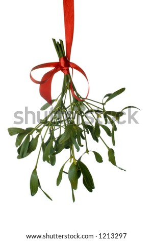 Close-up of a bunch of mistletoe (Viscum album) with berries, hanging from ared ribbon and isolated on a white background - stock photo