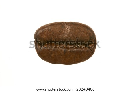 Close up of a coffee bean against white background