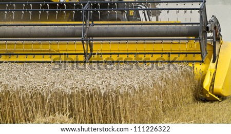 Close up of a combine harvester at work cutting cereal approaching the camera - stock photo