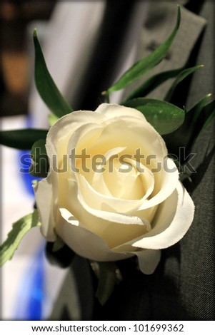 Close up of a cream (faux) rose buttonhole in the lapel of a formal wedding grey morning suit. - stock photo