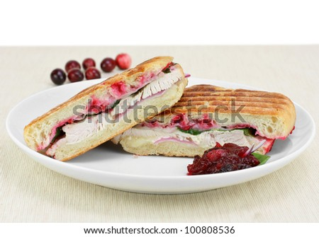 Close up of a delicious turkey, spinach, onion, melted cheese and homemade cranberry sauce.  Copy space. - stock photo