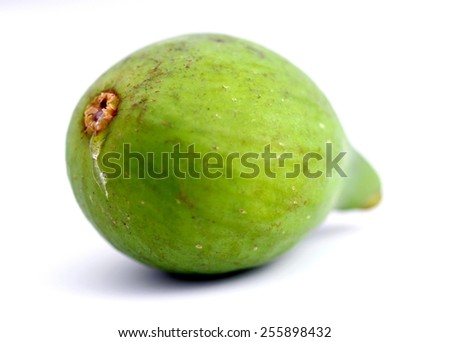 Close up of a green fig on white background. - stock photo
