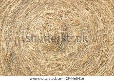 Close up of a hay bale - stock photo