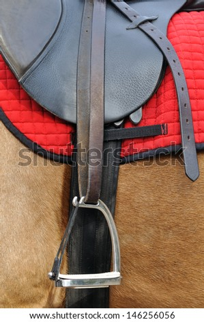 close up of a horse harness, side view in vertical composition - stock photo