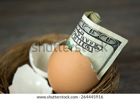 close up of a hundred dollar bill in a brown egg shell in nest - stock photo