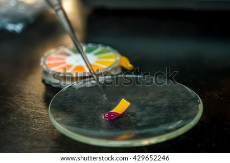 close-up of a indicator paper with acid testing - stock photo