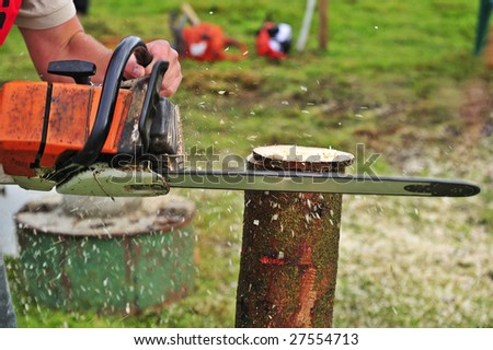 Close up of a logger using a chainsaw to cut slices from a log. Sawdust flying. Space for copy on the background. - stock photo