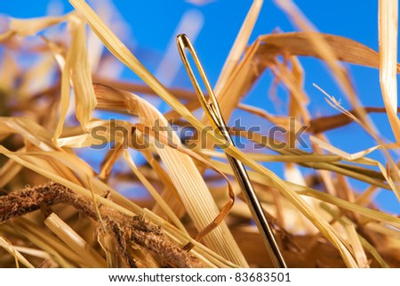 Close-up of a needle in a hay - stock photo