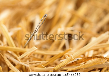 close up of a needle in haystack