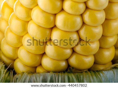 Close-up of a ripe Corn on the Cob. Macro Shot with Focus Stacking Technique. - stock photo