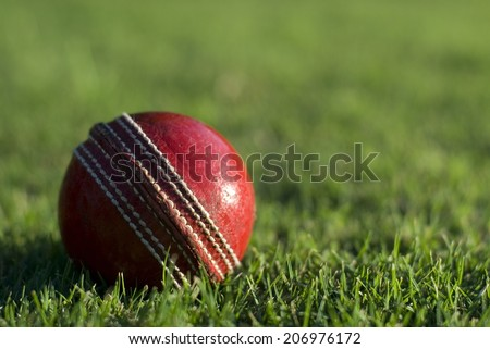 Close up of a side lit red cricket ball on the green grass of a sports field, with copyspace - stock photo