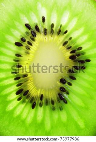 Close up of a slice of kiwi